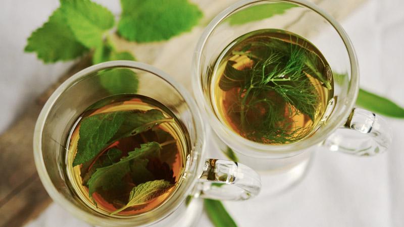 wlasciwosci-herbaty-remex